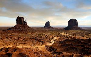 Arizona-desert-Desert-50
